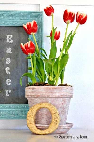 Tulips in an aged flower pot. Spring decor.
