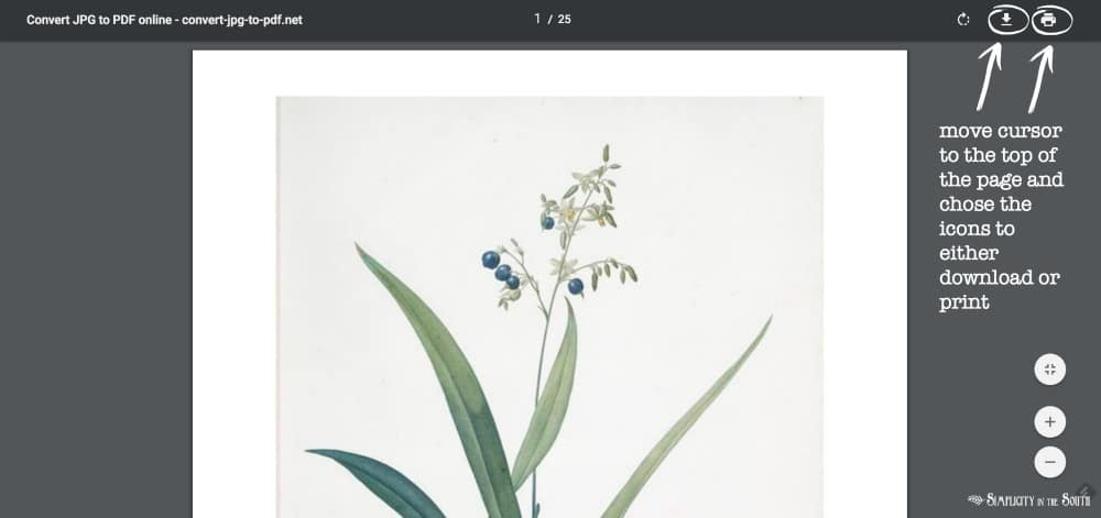 move the cursor to the top of the page and chose the icons to either download or print the botanical art