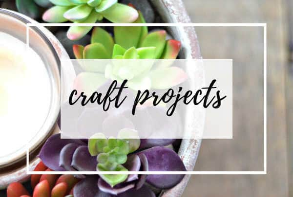 succulent centerpiece craft project