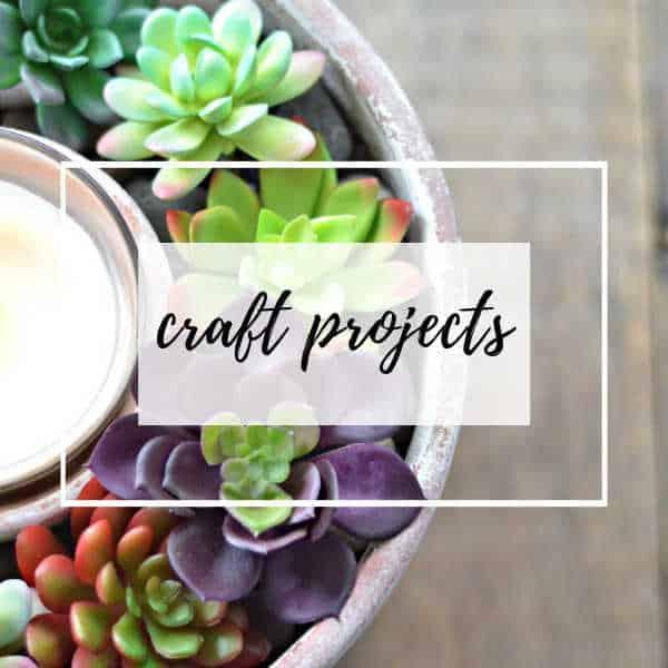 succulent centerpiece craft project