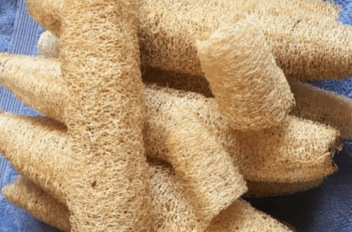 What You Should Know About Loofahs - Simplicity Mama