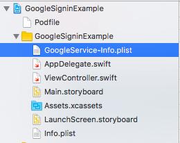 googleservice file