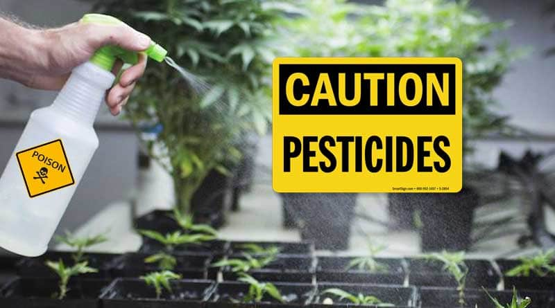 compliance issues with pesticides