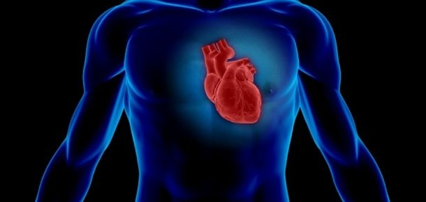 7 Boosters For The Heart And Circulation