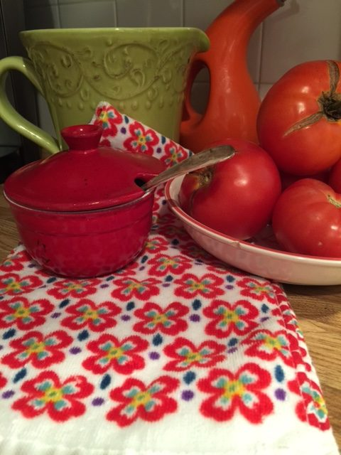 Red Pioneer Woman Dish Towels