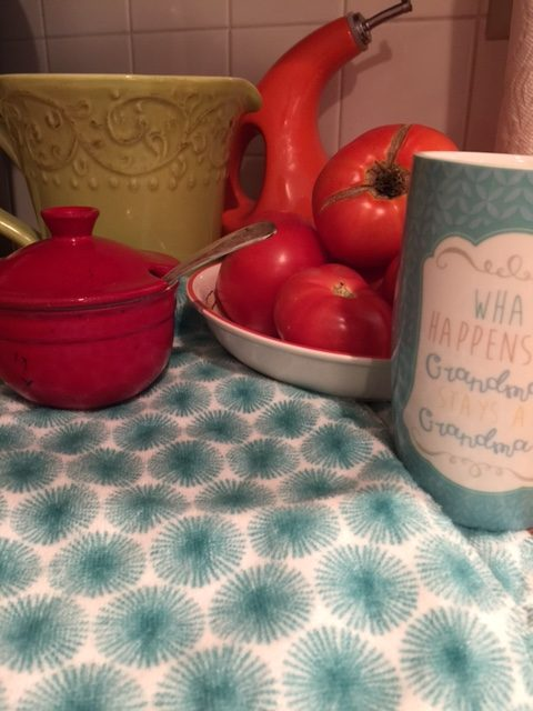 Teal and White Pioneer Woman Dish Towels