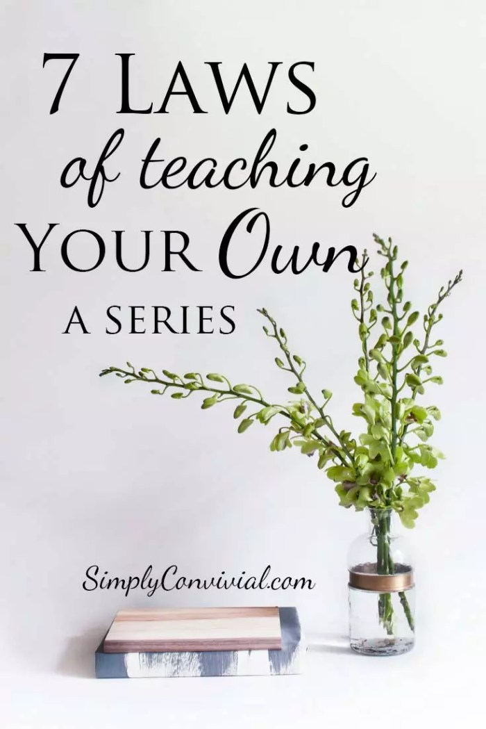7 Laws of Teaching your Own.