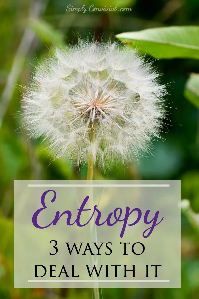 Entropy gets us every time. Yet, if we want to handle life well, we have to take entropy into account in our mindset and our approach.