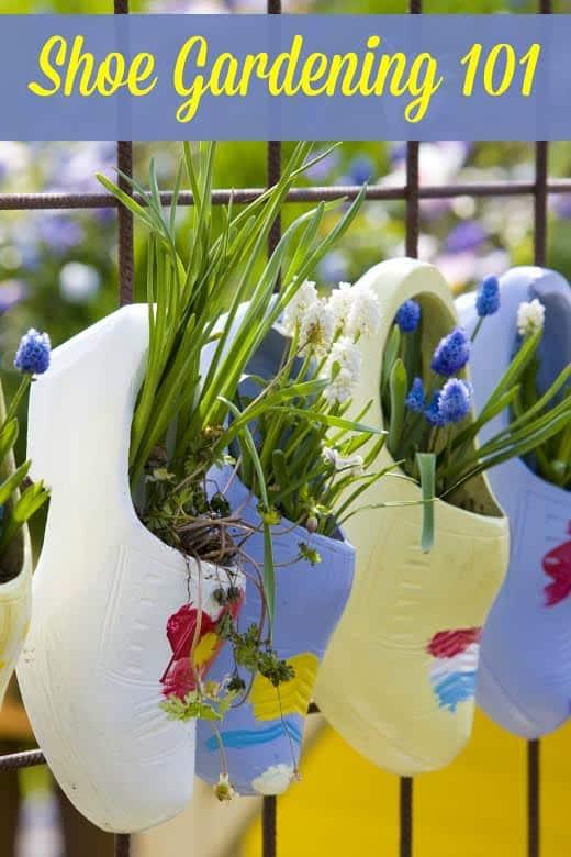 Shoe-Gardening