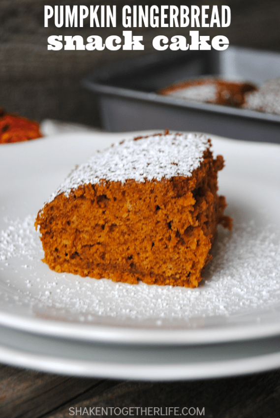 pumpkin-gingerbread-snack-cake-single