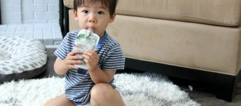 Easy Plant-Based Snacks for Picky Toddlers