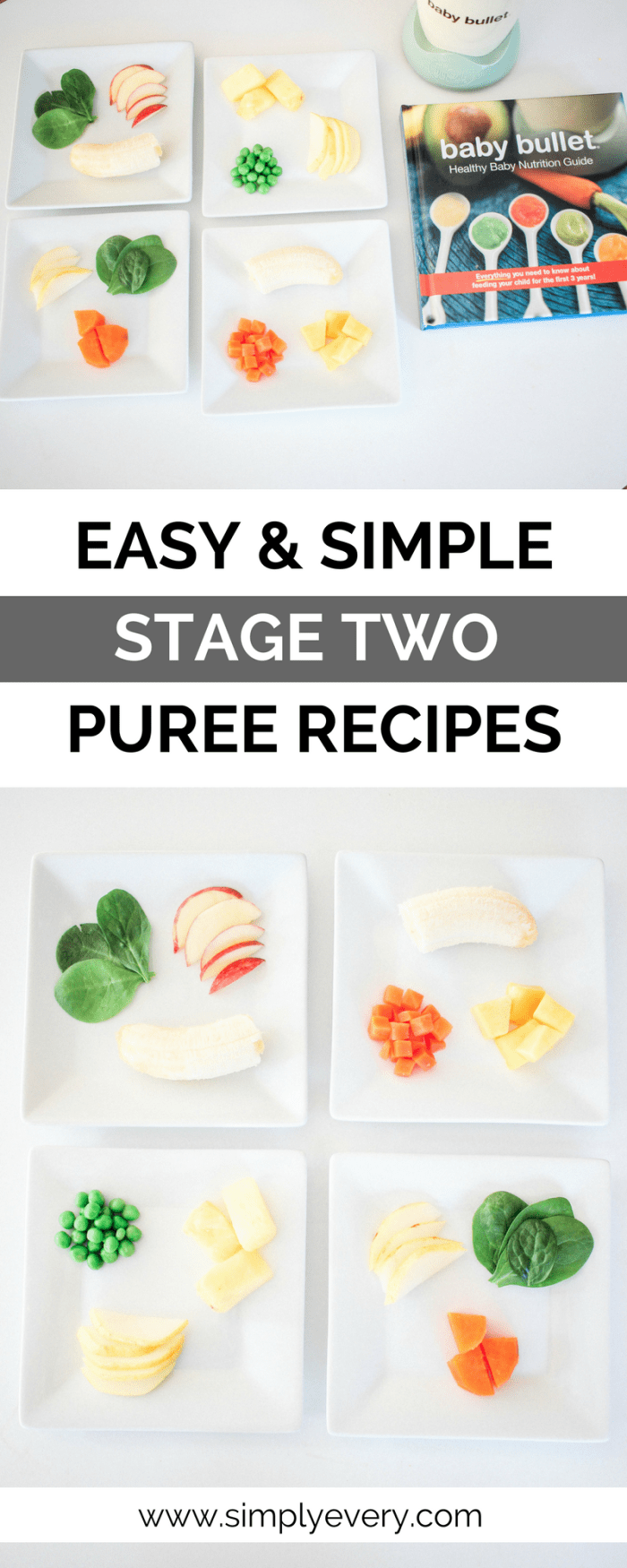 Easy Simple Stage Two Puree Recipes