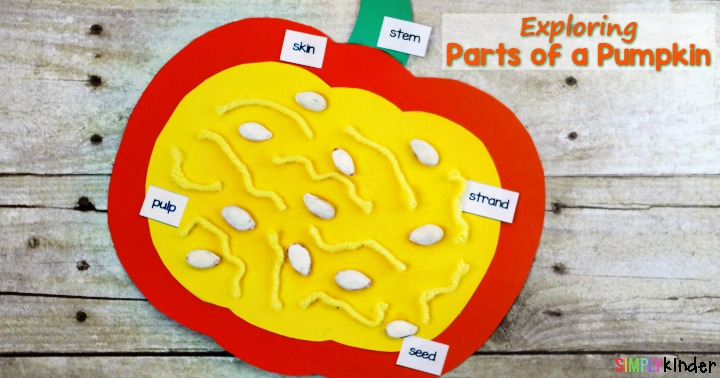 Free parts of a pumpkin labels from Simply Kinder.  A great Fall or Halloween Activity