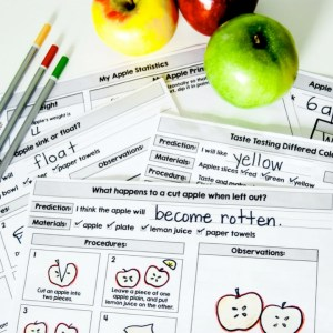 apple science for kindergarten