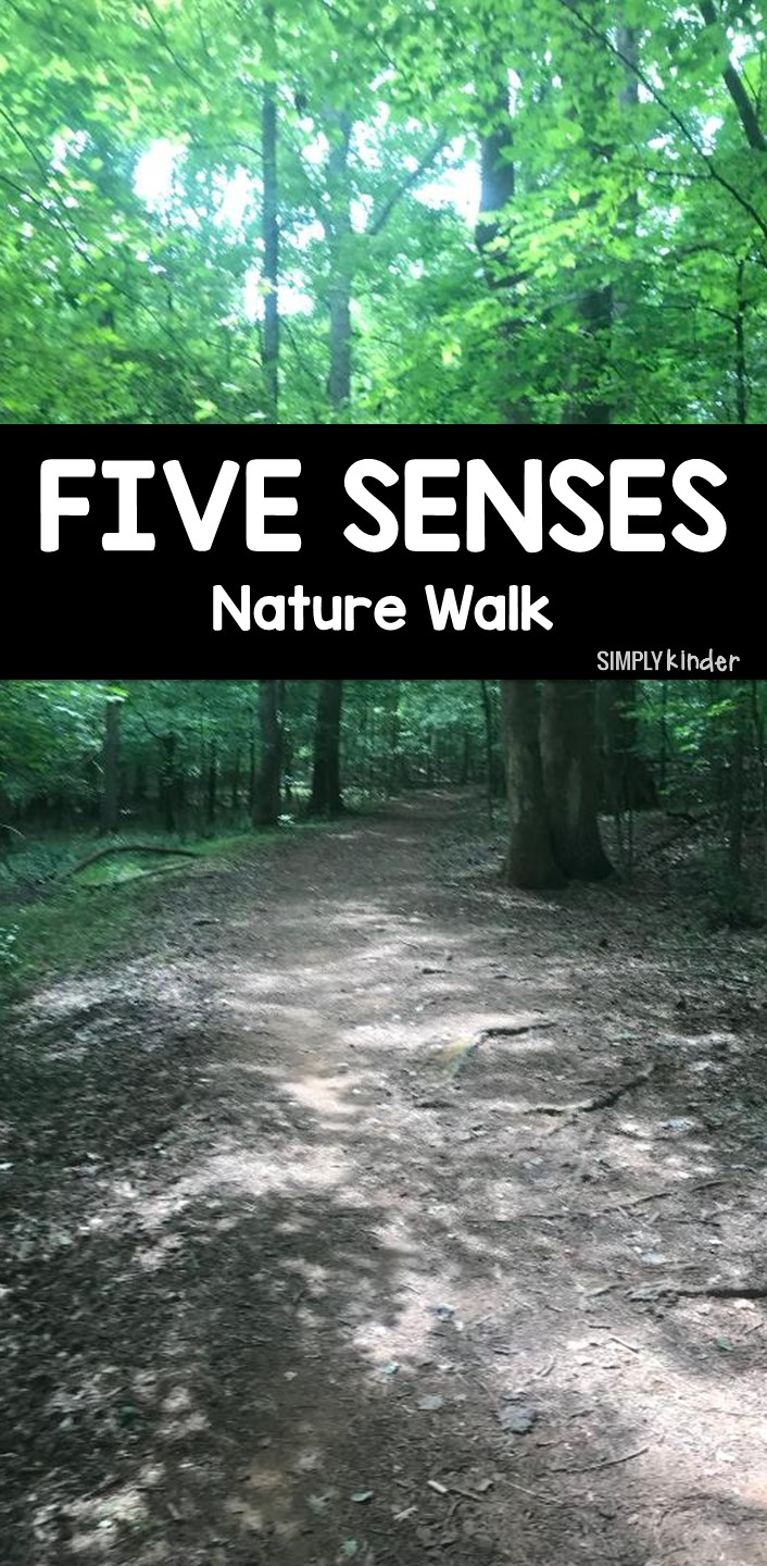Fall is the perfect time to take your students on an outdoor nature walk. I use this time of the year to introduce my students to our five senses and how to be scientists. This free recording sheet is great for your nature walk.