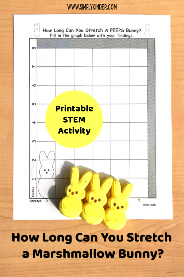 How long can you stretch a PEEP? PEEPS springSTEM activity for Kindergarten.