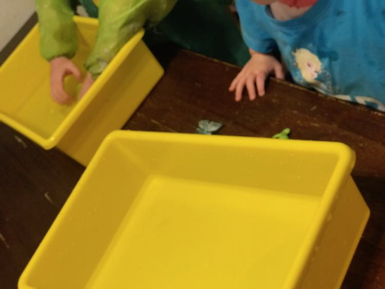 First I gave them their individual sensory bins.