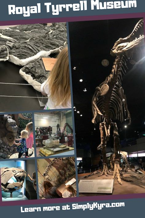 The Royal Tyrrell Museum is a gem located in Drumheller, Alberta within the Canadian Badlands. Come visit my post to see a sampling of what you can see at the museum along with links.