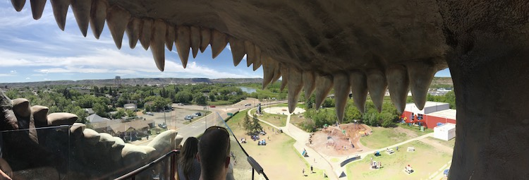 Panoramic view from the top of the stairs. There are then a couple stairs that lead down into the mouth of the dinosaur.