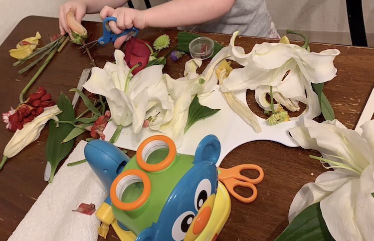 Ada loved trying to cut the flower stems.