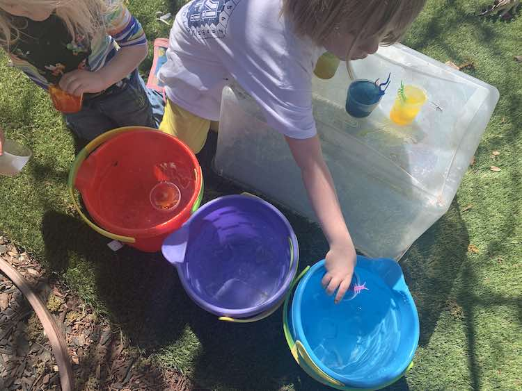 Overview of the three large sand pails filled with clear water. Zoey's standing beside one holding her rec cup while the other red cup floats in the red pail. Ada stands beside them hovering over the upside down bin with the frozen cups and placing one into the blue bin.