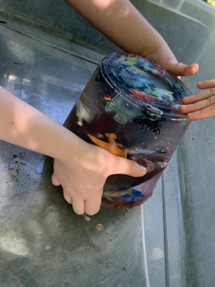 Ada trying to pick up the ice while Zoey touches it. You can see the bin around the cylinder ice. The animals float within the ice and the color shine through from the center.