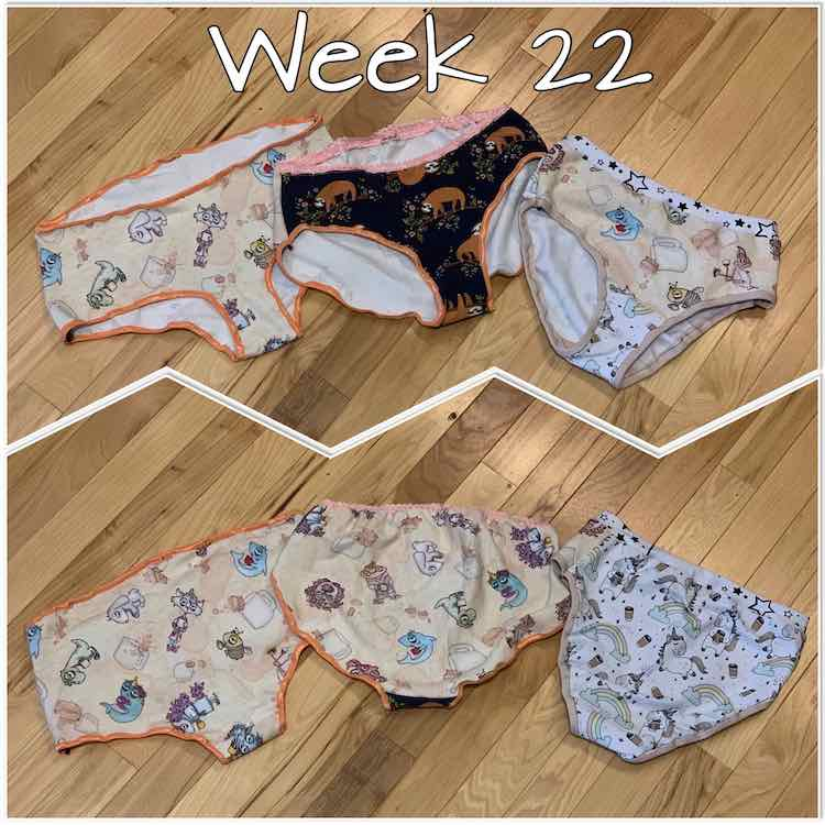 "Image shows two photos separated by a white zigzag. Overlaid at the top is white text saying ""week 22"" The top image shows the front of three pairs of underwear while the bottom image shows the back of them."