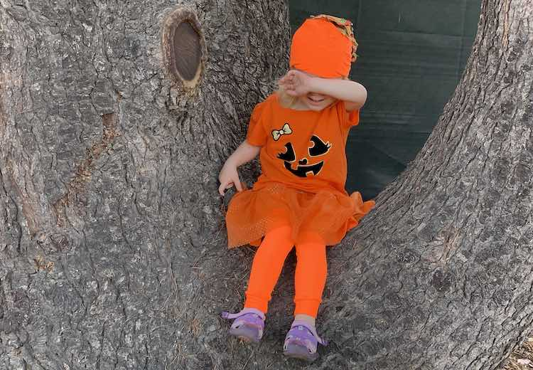 View of a tree with Zoey sitting in the dip between two parts. Her arm is lifted hiding her eyes.