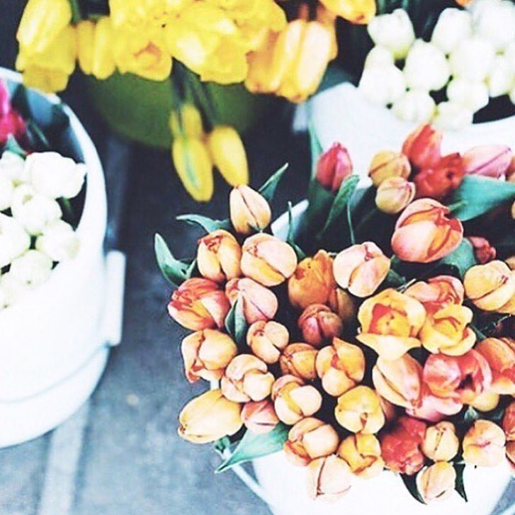 Some blooms to brighten up your Wednesday! simplyleopard flowersnbspRead more