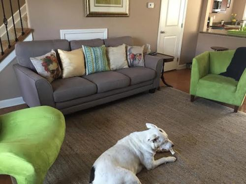 Bargains and Buyouts Couch