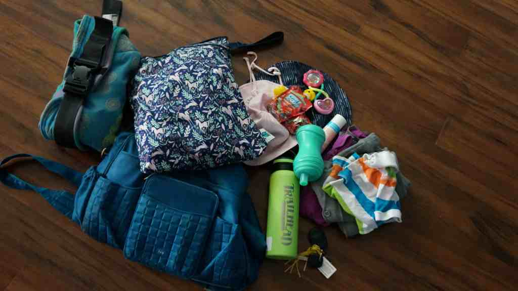 Cloth Diapering 2 Kids - Planet Wise Wet/Dry Bag