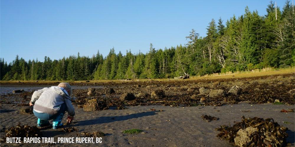 Exploring Low Tide at Grassy Bay on the Butze Rapids Trail in Prince Rupert #exploreBC #travelCanada
