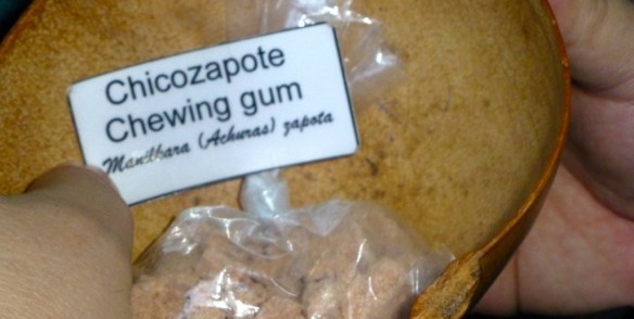 Chicozapote Chewing Gum