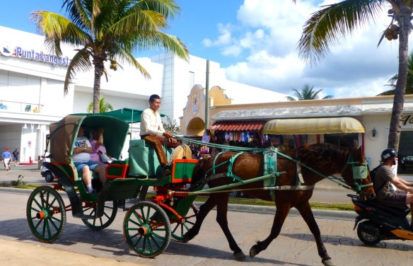 Horse and Carriage, Cozumel, Mexico