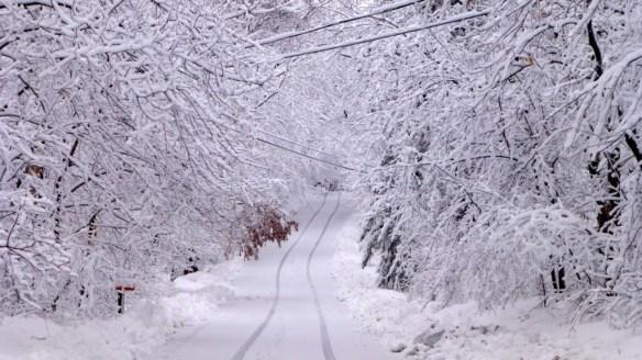 Minnesota April Snow