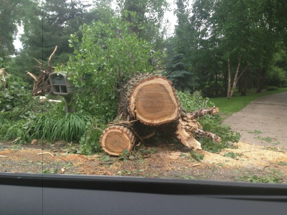 Minnesota Storm Damage