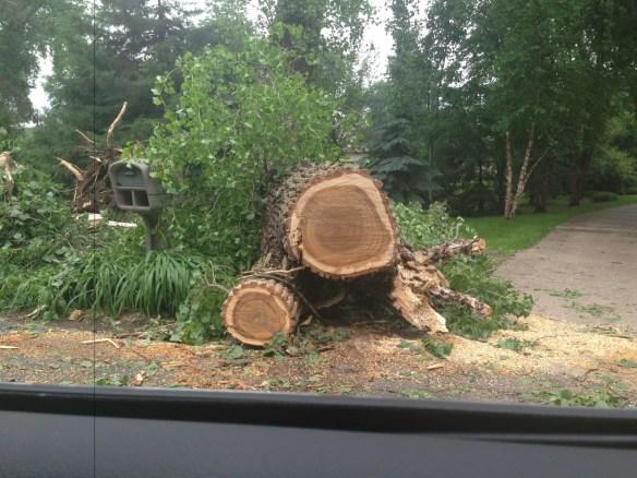 Minnesota Storm Damage