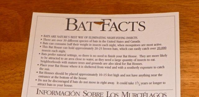 Bat Facts Sheet