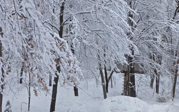 Minnesota Blizzard 2014