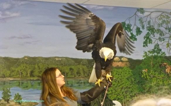 The National Eagle Center