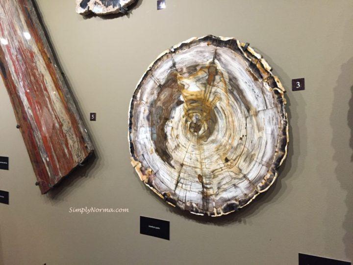 Amethyst Quartz, The Zuhl Museum