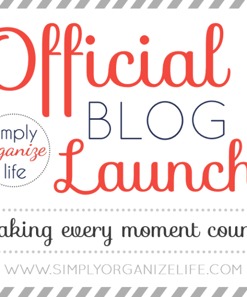 Official Blog Launch - Simply Organize Life