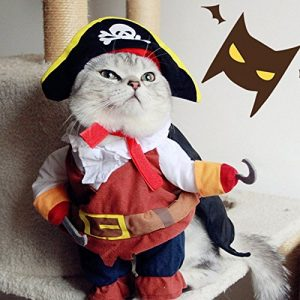 Cat costumes and dog costumes can be worn for Halloween, Christmas, birthday parties and any special occasion.