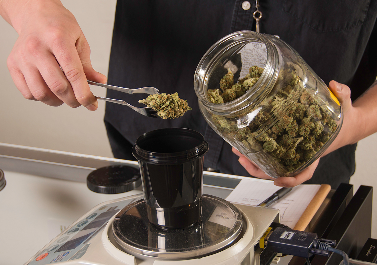 Budtender weighing out buds on the scale for Denver dispensary deals