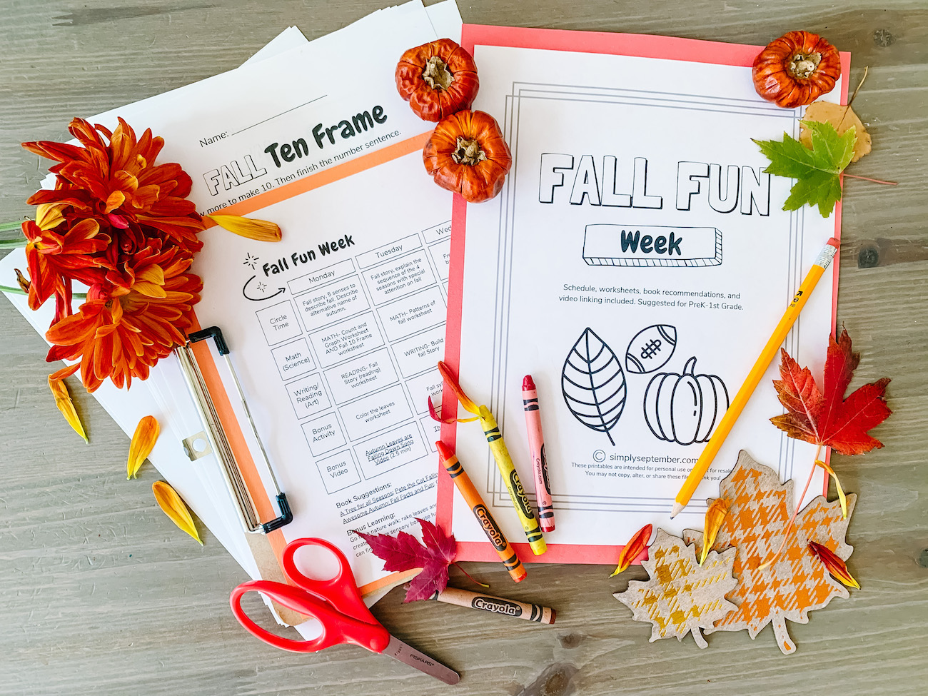 Fall Fun Week Prek 1st Grade Pumpkin Themed Resources