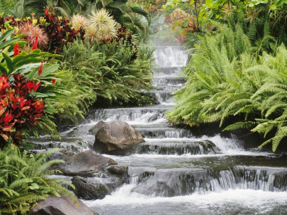 A cascading waterfall, flanked by flowers.