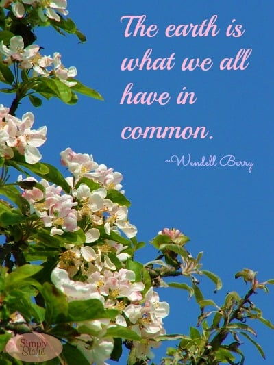 earth day quotes - photo #11