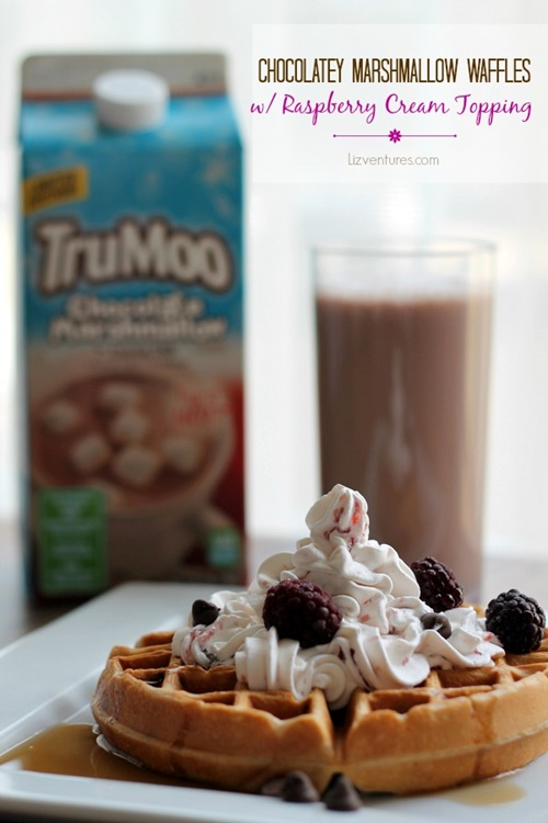 Chocolatey-Marshmallow-Waffles-with-Raspberry-Cream-Topping