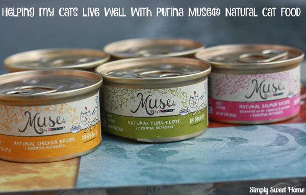 Helping My Cats Live Well with Purina Muse