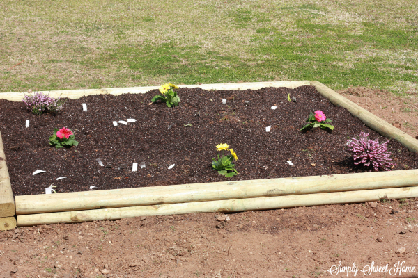 First Flower Bed